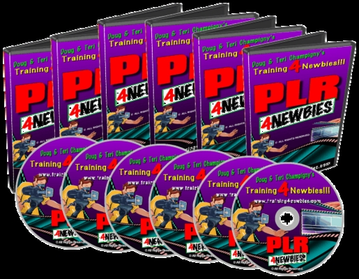 Product picture PLR For Newbies Video Series, Make more money than the norma